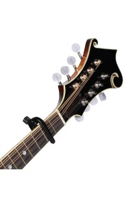 PLANET WAVES PW-CP-11